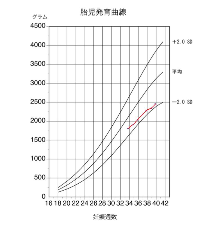 赤ちゃんの胎児成長曲線