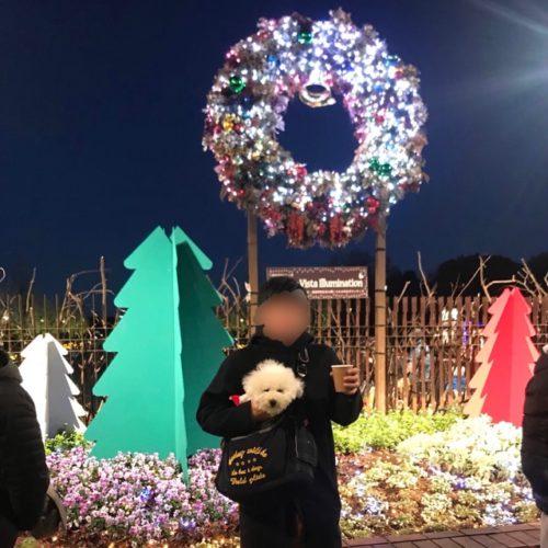 昭和記念公園で撮った写真