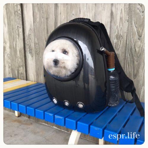 宇宙船型キャリーバッグ